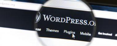 WordPress Graphic